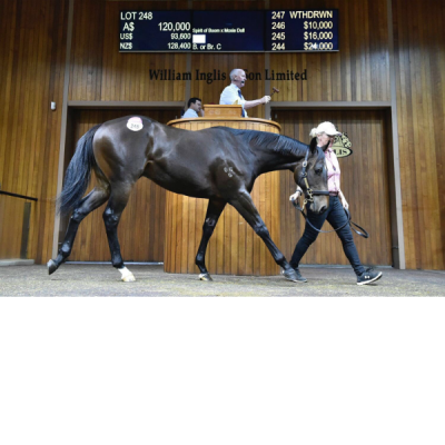 YEARLING SALES